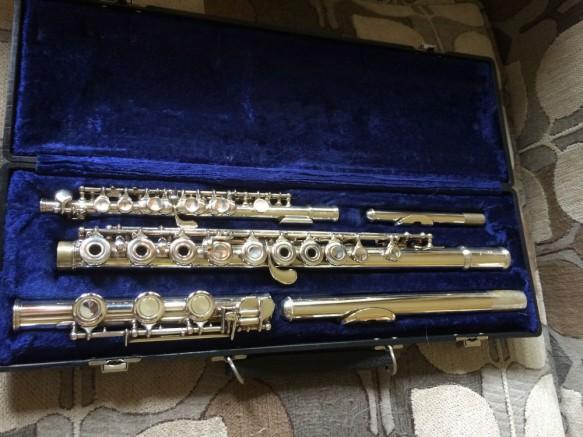 Flute & piccolo in case